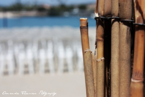 dunes 126