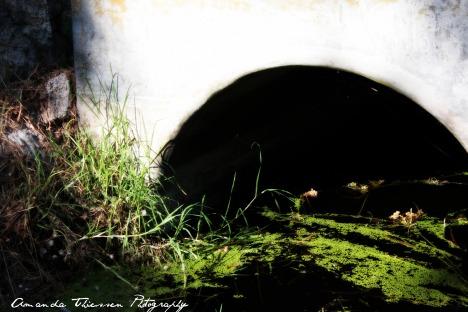 miriam_photoshoot 252