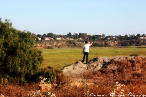 wetlands 050