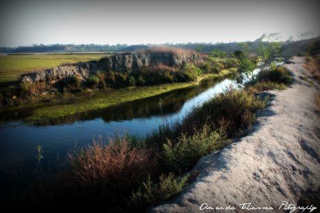 wetlands 070