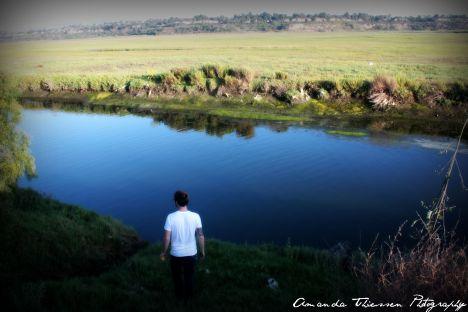 wetlands 075
